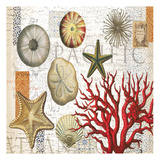 Sea Treasures Prints by  Ophelia & Co.
