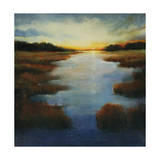Low Land Reflection Giclee Print by Tim O'toole