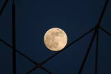 The Full Moon Rises over the Benfica Luz Stadium Photographic Print by Miguel A. Lopes