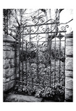 Gated View 3 Prints by Sandro De Carvalho