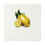 Lemon Giclee Print by Sydney Edmunds
