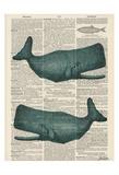 Sperm Whale Plakater af Tina Carlson