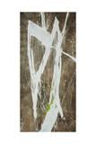 Imprint III Giclee Print by Joshua Schicker