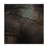 Buds of May Giclee Print by Sydney Edmunds