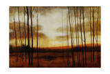 Clear View Giclee Print by Tim O'toole