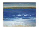 Distant Sail Giclee Print by Timothy O'Toole