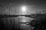 Sparkling Sunrise Photographic Print by Adrian Campfield