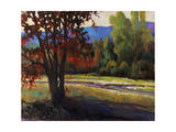 Sign of Fall Giclee Print by Timothy O'Toole