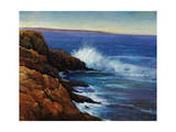 Wave Breaker Giclee Print by Timothy O'Toole