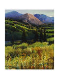 Mountain High Giclee Print by Timothy O'Toole