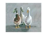 The Three Amigos Reproduction procédé giclée par Louise Brown