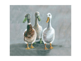 The Three Amigos Giclee Print by Louise Brown