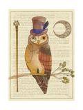 Steampunk Owl II Premium Giclee Print by Elyse DeNeige