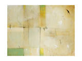 Patchwork II Giclee Print by Timothy O'Toole