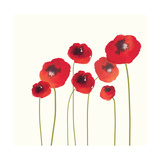 Poppies Giclee Print by Nicola Evans