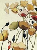 Pavots Ondule I Giclee Print by Shirley Novak