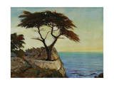 View Point Giclee Print by Timothy O'Toole