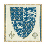 Regal Shield Indigo and Cream Giclee Print by Designs Meloushka