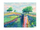 Three Moorland Trees Giclee Print by Daniel Cole