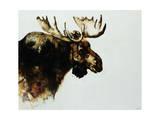 Moose Giclee Print by Sydney Edmunds