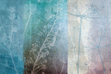 Ethereal Prints by Hugo Wild