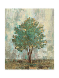Verdi Trees II Premium Giclee Print by Silvia Vassileva