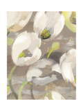 Tulip Delight I Giclee Print by Hristova Albena