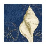 Coastal Moonlight IV Teal Prints by  Pela