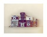 Camera Collection Giclee Print by Ian Winstanley