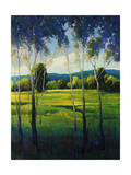In the Shade Giclee Print by Timothy O'Toole