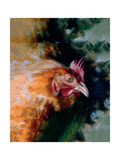 Brown Chicken Giclee Print by Simon Howden