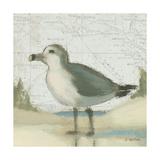 Beach Bird II Reproduction giclée Premium par James Wiens