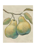 Lovely Fruits I Neutral Plain Print by Daphne Brissonnet