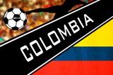 Brazil 2014 - Colombia Photo