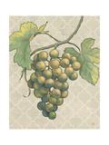 Lovely Fruits IV Neutral Crop Pósters por Daphne Brissonnet
