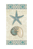 Beach Treasures I Prints by Emily Adams
