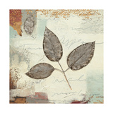 Silver Leaves II Poster by James Wiens