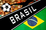 Brazil 2014 - Brazil Prints