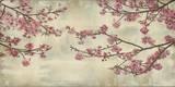 Kirsebærtræer i flor Posters af John Seba