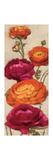 Free Range Roses I Premium Giclee Print by Diane Hoeptner