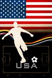 Brazil 2014 - USA Reprodukcje