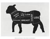 Lam, lichaam van lam met Engelse omschrijving van eetbare gedeelten Kunst