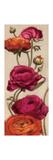 Free Range Roses II Premium Giclee Print by Diane Hoeptner