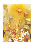 Meadow Flowers Giclee Print by April Richardson