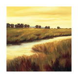 Golden Stream Giclee Print by Tim Howe