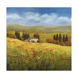 Lo Splendor De La Toscana Giclee Print by Tim Howe