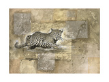 Leopard Profile Impression giclée par Marta Wiley