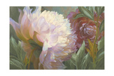 Peony Pas De Deux Giclee Print by Elizabeth Horning