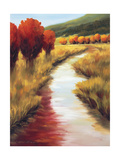Beyond the Stream Giclee Print by Tim Howe