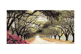 Southern Sojourns II Giclee Print by Jill Tishman